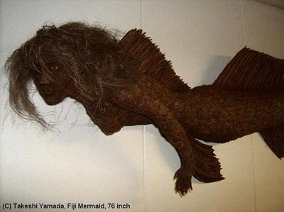 Coney Island Fiji Mermaid
